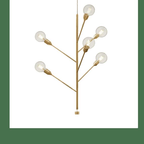 modo luce baobab 6